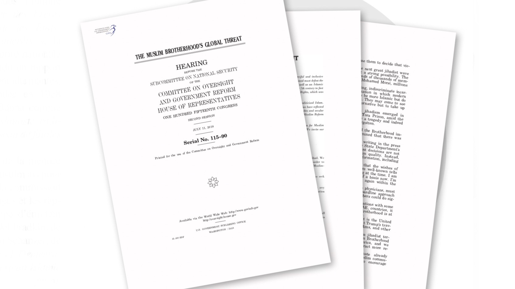 The report of the US Congress that alarms the Muslim Brotherhood